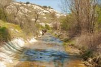 Плывём по ручью