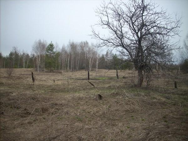 Все что осталось от деревни Ямки